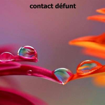 Contact Défunt - 1