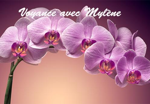 Tous les forfaits de voyance avec Mylène